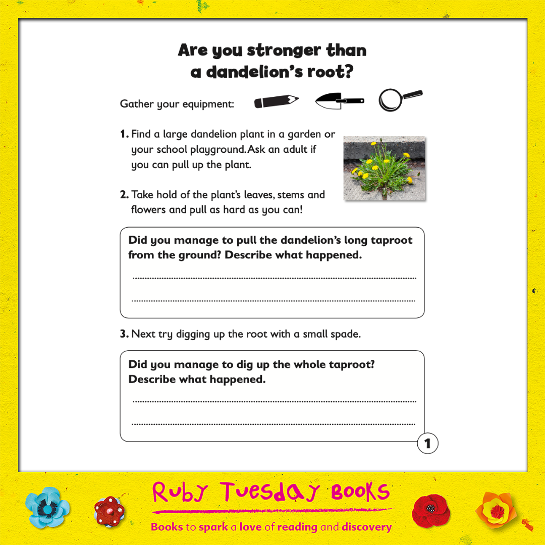 Mr Green Free Resources - Are you Stronger than a Dandelion's Root?