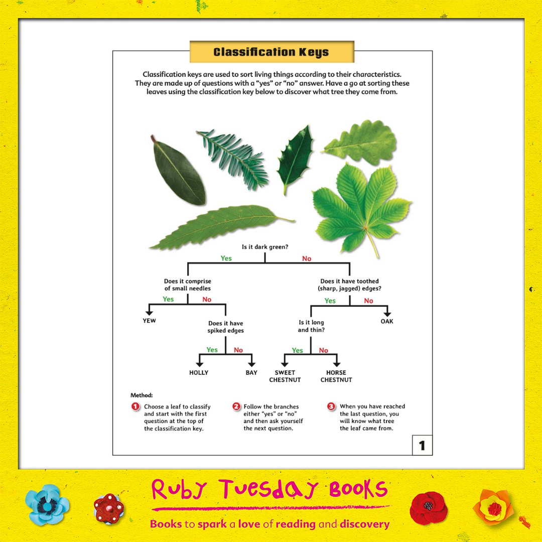 Mr Green Free Resources - Leaf Classification