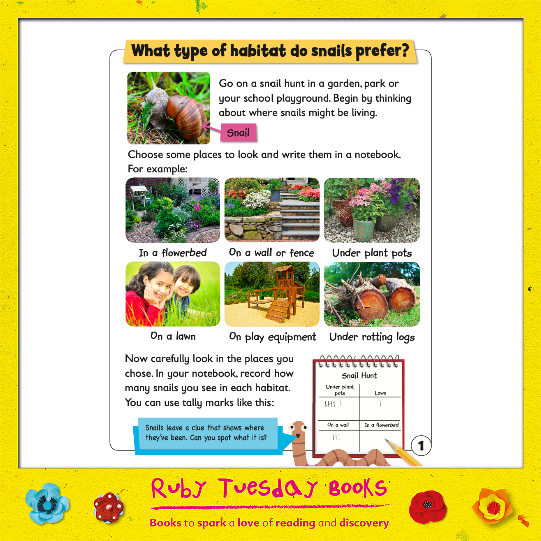 Mr Green Free Resources - What Habitats do Snails Prefer?
