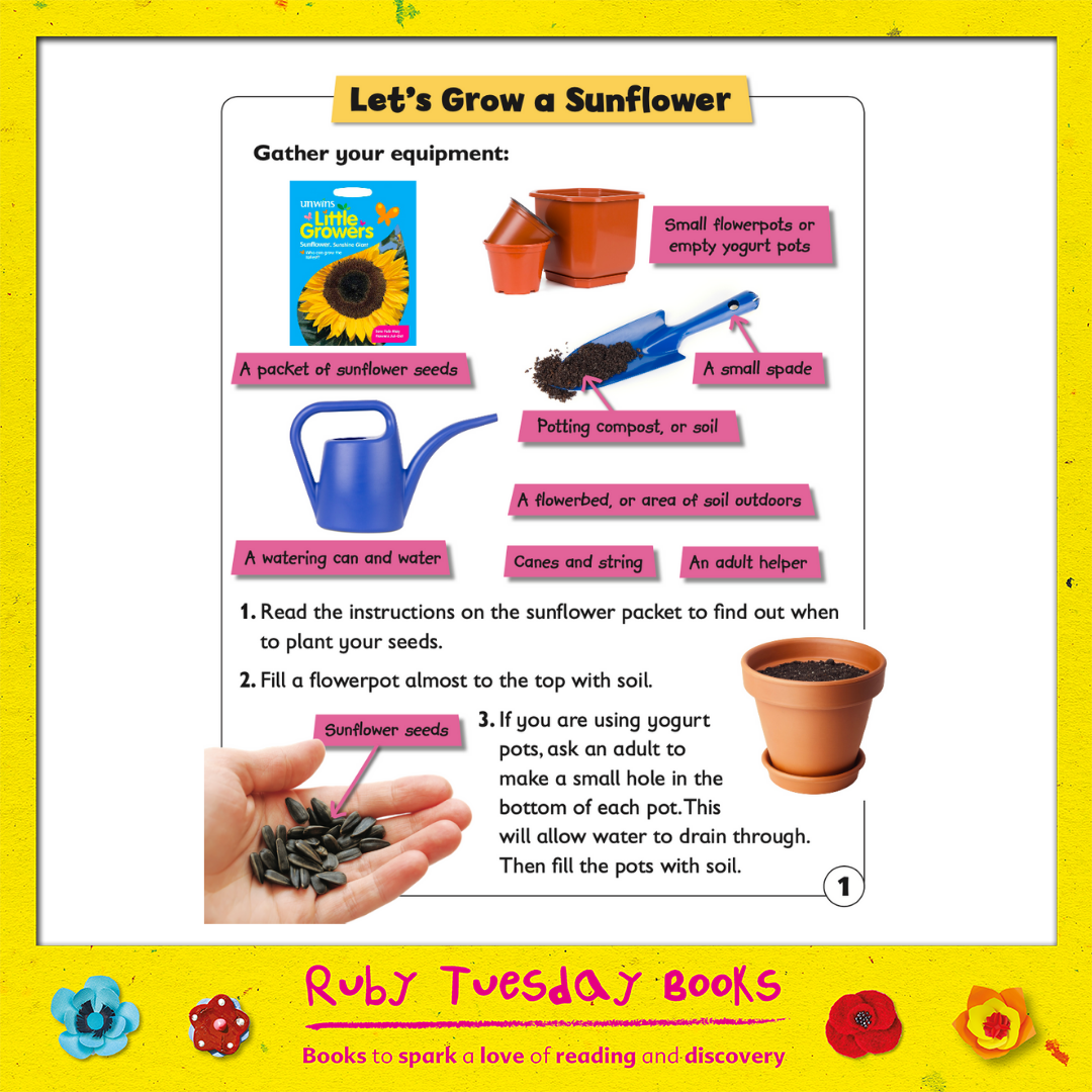 Mr Green Free Resources - Let's Grow a Sunflower