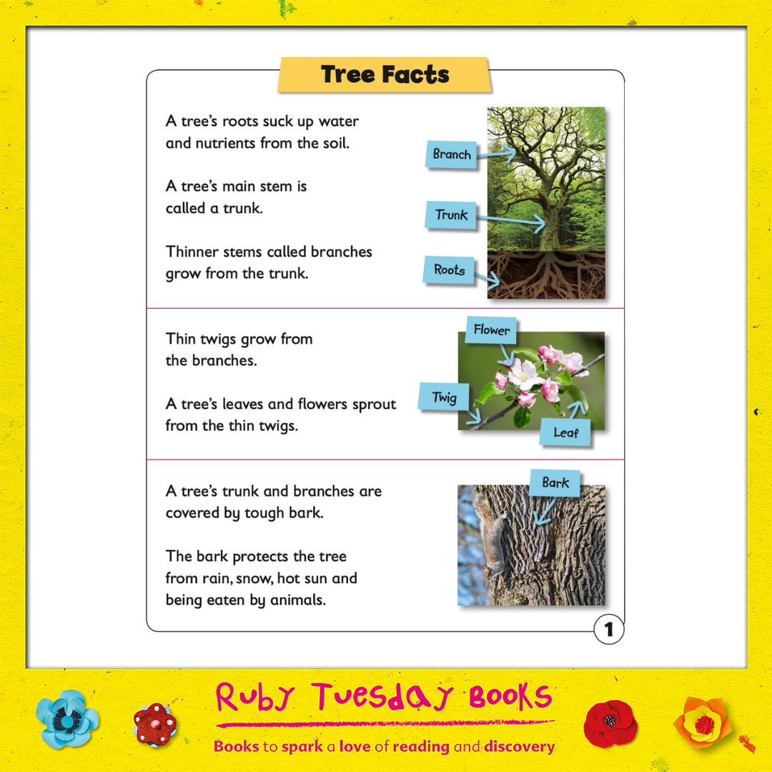 Mr Green Free Resources - Tree Facts
