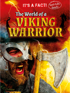 The World Of A Viking Warrior